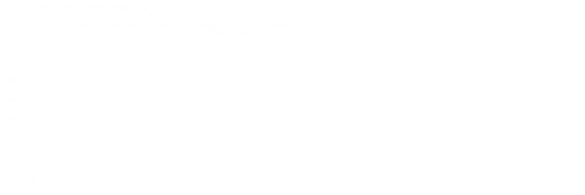 noumar-logo-blanc-hortizontal-espai-vital